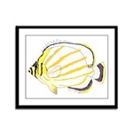 Ornate Butterflyfish Framed Panel Print
