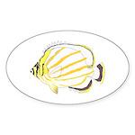 Ornate Butterflyfish Sticker