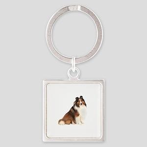 Shetland Sheepdog (sw7) Square Keychain