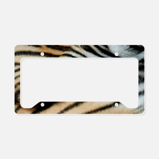Tiger 02 License Plate Holder