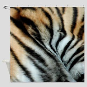 Tiger 02 Shower Curtain