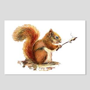 Fun Red Squirrel Roasting Marshmallows Postcards (