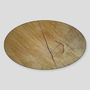 Tree Trunk Wood Photo Design Sticker (Oval)