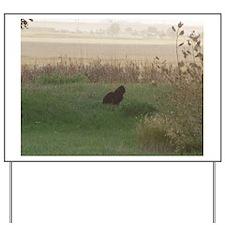 Farm Cat at Dusk Yard Sign