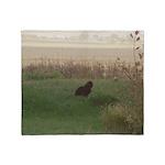 Farm Cat at Dusk Throw Blanket