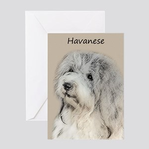 Havanese (Gold Sable) Greeting Card