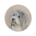 Havanese (Gold Sable) 3.5