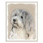 Havanese (Gold Sable) Small Poster