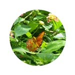 Orange Butterfly 3.5