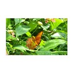 Orange Butterfly 35x21 Wall Decal