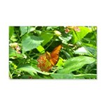 Orange Butterfly 20x12 Wall Decal