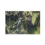 Under the Falls Rectangle Magnet (10 pack)