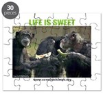 Save the Chimps - Life is Sweet Puzzle