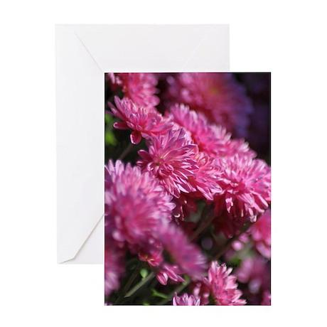 Chrysanthemum Blooms Greeting Cards