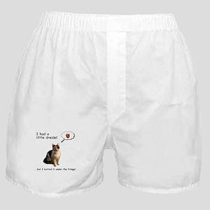 Hanukkah Dreidel Cat Boxer Shorts