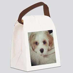 Barney the Cavachon Canvas Lunch Bag