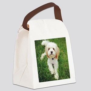 Barney the Cavachon on the grass Canvas Lunch Bag