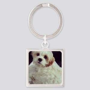 Barney the Cavachon relaxing Square Keychain