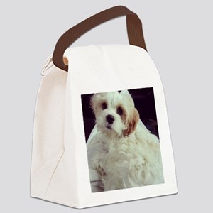 Barney the Cavachon relaxing Canvas Lunch Bag