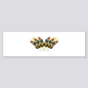 Fall Color Feathers Bumper Sticker