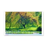 Willow Wall Decal