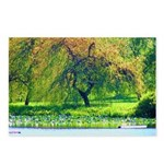 Willow Postcards (Package of 8)