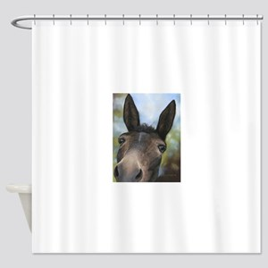 Brown Mule Art by Dawn Secord Shower Curtain