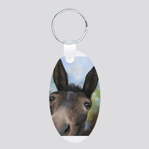 Brown Mule Art by Dawn Secord Keychains