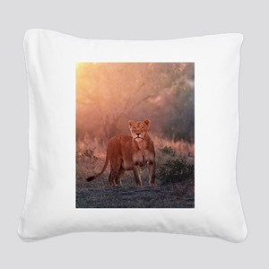 Searching for Cubs Square Canvas Pillow