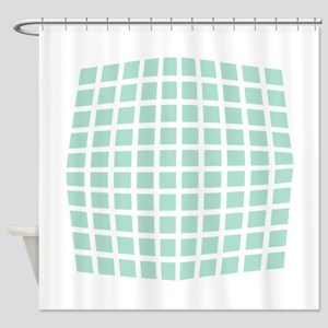 Cool Mint Checked Shower Curtain