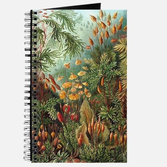 Unique Artistic places Journal