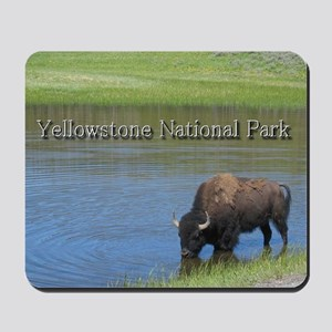 Wild American Buffalo in Yellowstone Nat Mousepad