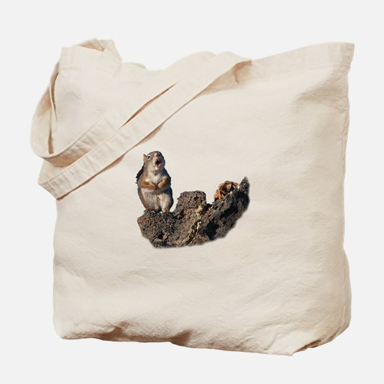Ode to My Pine Cone Tote Bag
