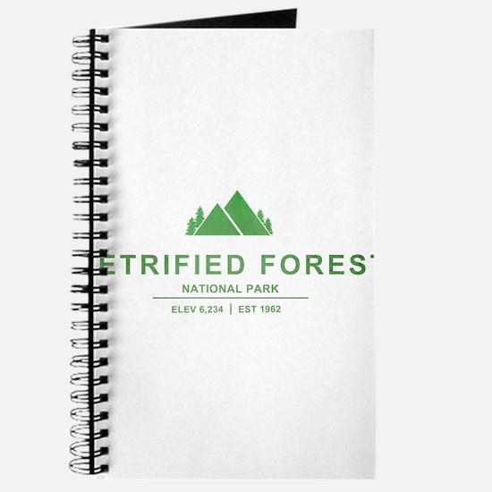 Petrified Forest National Park, Arizona Journal