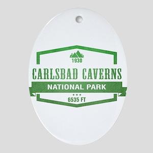 Carlsbad Caverns National Park, New Mexico Ornamen