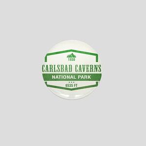 Carlsbad Caverns National Park, New Mexico Mini Bu