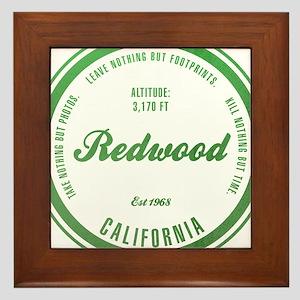 RedWood National Park, California Framed Tile