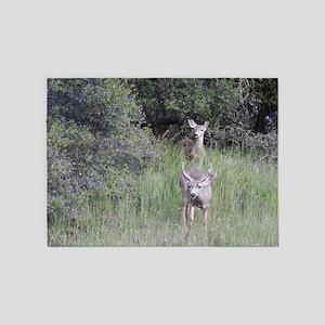 A Natural Surprise, Mule Deer 5'x7'Area Rug