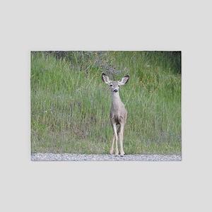 Wild Cutie, Young Mule Deer 5'x7'Area Rug
