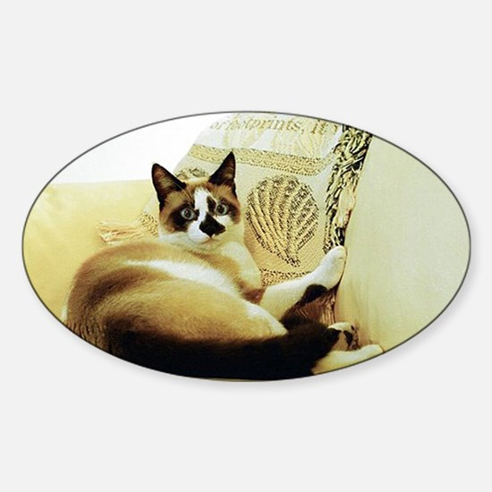 Sooner Lounging Sticker (Oval)