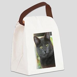 Mez-purr-eyezed Canvas Lunch Bag