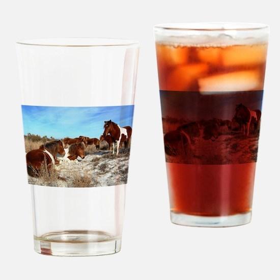 One Sunny Day, Wild horses, Assateague Island Drin