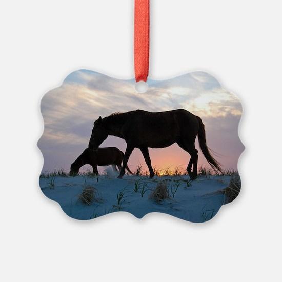Onward Bound Ornament