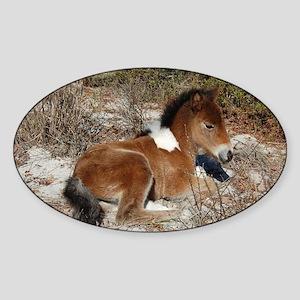 Trots Alot, Wild Horse Sticker