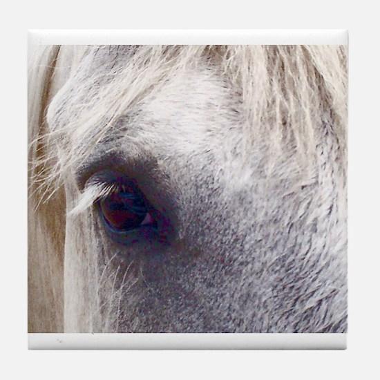 Cute Abused horses Tile Coaster