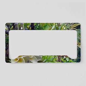 Tropics With Plumeria License Plate Holder