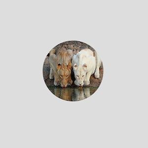 Lions Mini Button
