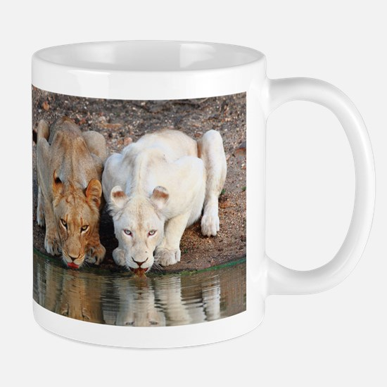 Lions Mugs