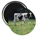 I Love You Cow Magnets