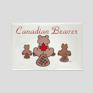 Canadian Beaver Rectangle Magnet